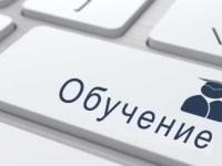 Грипп наступает: новгородская школа № 25 перешла на дистанционное обучение
