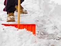 Новгородцы предлагают устроить суровый флешмоб по уборке города от снега