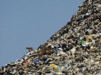 России предстоит борьба с горами хлама и мутными мусорными конторами