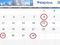 В феврале новгородки и новгородцы смогут пройти обследование у онколога без направления