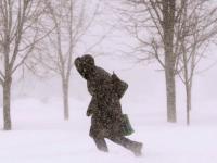 В Новгородской, Псковской и Вологодской областях ждут штормовой ветер