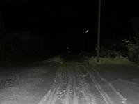 В Пестовском районе труп пропавшего в лесу мужчины обнаружили на обочине дороги