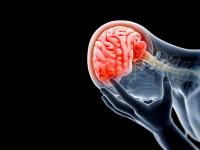 За сутки две девушки в Новгородской области получили сотрясение мозга в ДТП