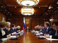 Андрей Никитин рассказал Дмитрию Медведеву о сложностях новгородских матерей