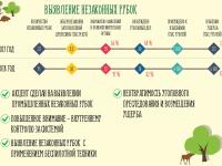 «Черных лесорубов» в Новгородской области при помощи беспилотников пока только выслеживают