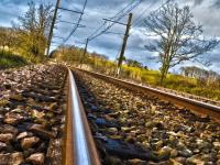 Лже-провожающий из Киргизии проник в поезд и обокрал пассажиров во время поездки по Окуловскому району