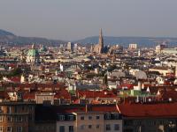 Новгородскому бизнесу представилась уникальная возможность найти новых партнеров в Австрии
