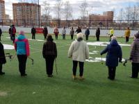 Новгородцев обучили правильной технике ходьбы с палками