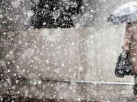 Синоптики рассказали о погоде на эту неделю в Новгородской области