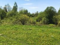 В Маловишерском районе площадка под сельское хозяйство ищет себе инвестора