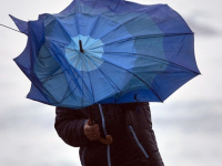 В Новгородской области на длинные выходные прогнозируют шторм