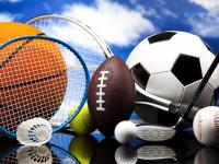 В новгородском правительстве пояснили, почему нескольким спортивным федерациям приостановили аккредитацию