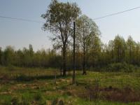 Вблизи Великого Новгорода сдают в аренду инвестплощадку в 5 га
