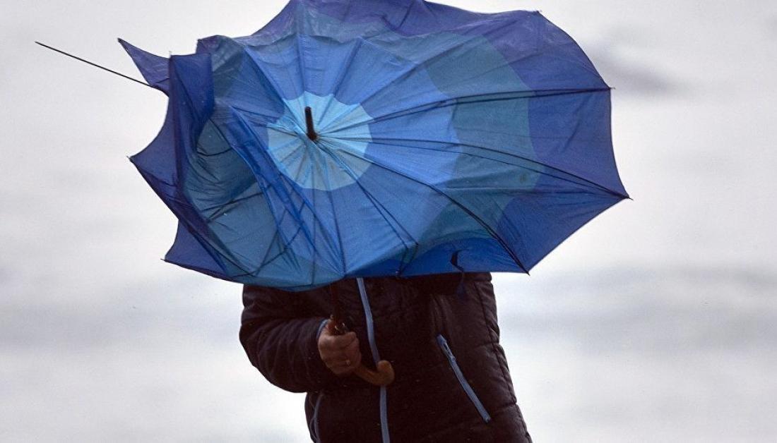 В Новгородской области усилится ветер до очень крепкого