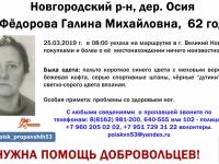 62-летняя женщина пропала по пути в Великий Новгород