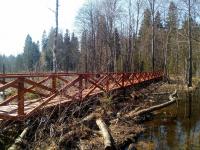 На Большой Валдайской тропе построили первый мост, чтобы быть ближе к бобрам