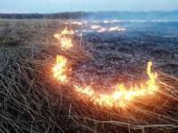 Фотофакт: c двух сторон трассы М-10 в Новгородском районе горит трава