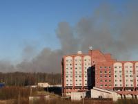 Пожар подобрался к Великому Новгороду. Жителей «Ивушек» заволокло дымом