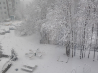 Шутки зимы: в Валдае за ночь выпало около десяти сантиметров снега