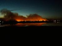 У новгородской деревни Ращеп горит поле