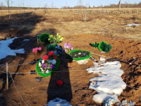 В Новгородской области осквернили еще одно сельское кладбище