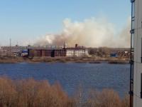 В Новгородской области пожарные тушат более 30 полей