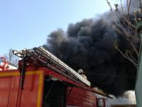 В Старой Руссе детскую школу искусств пришлось эвакуировать из-за горящих рядом сараев
