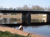 В Старой Руссе мужчина решил посидеть в ледяной воде. Прохожие не выдерживали этого зрелища