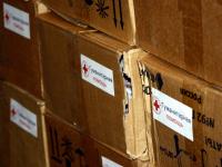 Новгородский Красный Крест предоставит пожилым не только помощь, но и общение