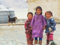 Авторы фильма о загадочной Монголии бесплатно покажут картину новгородцам