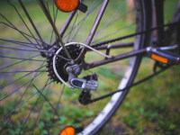 На берегу Волхова у спящего новгородца украли велосипед и мобильный телефон