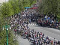 Шествие «Бессмертного полка» в Великом Новгороде (фоторепортаж)