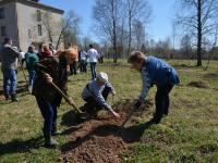 В Хвойнинском районе возродили советский сад и дореволюционную ярмарку