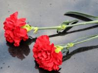 Депутаты Новгородской областной Думы и молодые парламентарии почтили память советских воинов