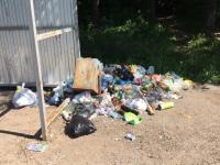 Фотофакт: мусорная проблема на автобусной остановке у Юрьева монастыря продолжается годами