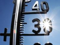 МЧС предупреждает жителей Новгородской области о 30-градусной жаре