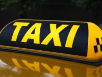 Новгородец «окультурил» дикую коноплю, продал таксисту и получил большой срок