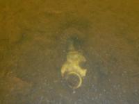 Новгородские поисковики-дайверы нашли на дне озера Вельё останки красноармейцев
