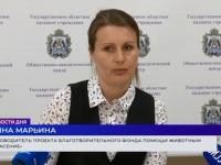 Новгородские зоозащитники рассказали, как планируют потратить президентский грант