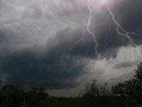 В Новгородской области неделя завершится ливневыми дождями с грозами