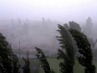 В Новгородской области ожидаются грозы, шквальный ветер и град