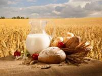 В «Опоре России» помогут новгородским сельхозпредприятиям экспортировать продукцию
