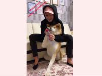 Алина Загитова присоединилась к Bottle Cap Challenge и сбила крышку лапой Масару
