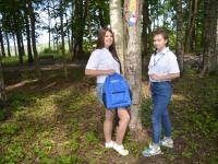 Губернатора Новгородской области заинтересовал проект холмских школьниц «Визуальное лечение»