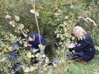 В Санкт-Петербурге пенсионерка «похоронила» 49-летнюю дочь в кустах