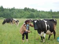 Фермеры Новгородской области могут получить «Агростартап»