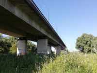 В этом году Колмовский мост не будут перекрывать во время ремонта
