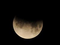 Частное лунное затмение новгородцы смогут увидеть в ночь с 16 на 17 июля