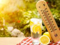 В выходные Новгородскую область настигнет жара