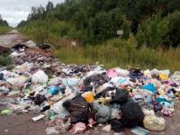 Жители деревни Ермолино жалуются на стихийные свалки вдоль дорог